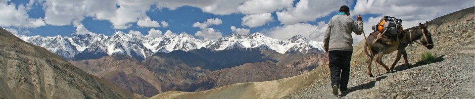 Ladakh -Trekking im indischen Himalaya
